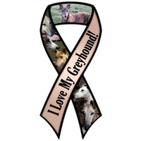 Greyhound Ribbon Magnet