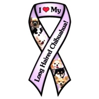 Long Haired Chihuahua Magnet Purple Ribbon