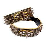 Dog Collar Studded Gold Croc